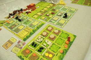 Agricola board - photo courtesy of Henrique Poyatos